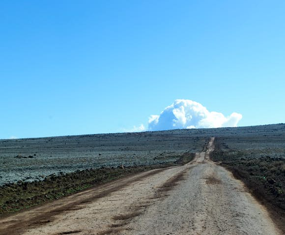 Reasons to Visit the Bale Mountains
