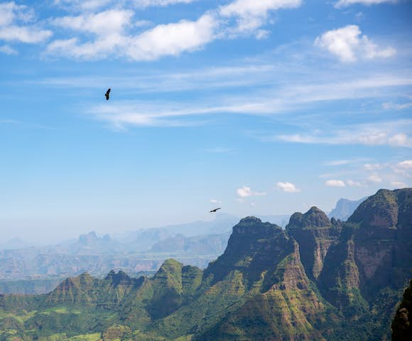 Landscape in the Simien Mountains with birds flying